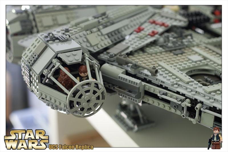 Falcon023.jpg